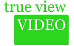 True View Video Conference Consulting